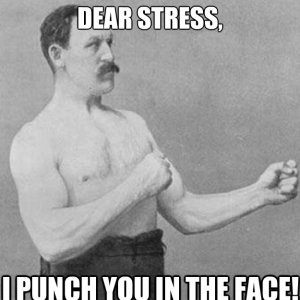 Stress I Punch You